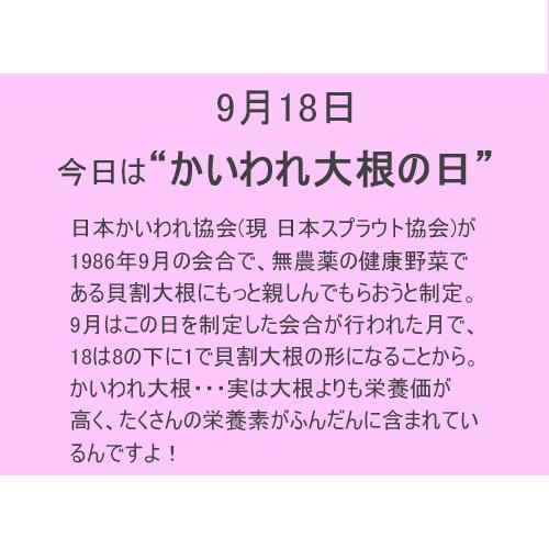9月18日は【カイワレ大根】の日!!
