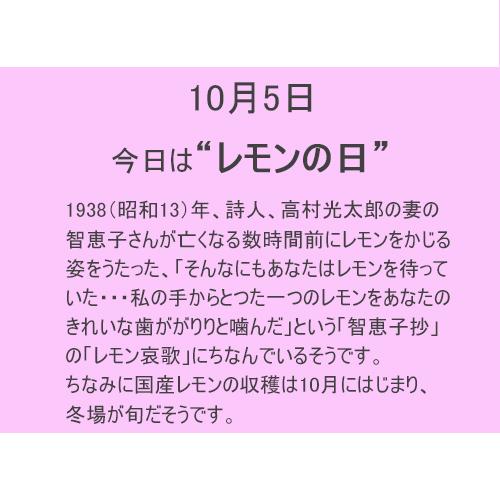 10月5日は【レモンの日】!!