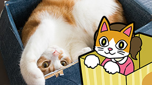 ネコを知り、ネコになりきる!期間限定イベント『なりきりニャンコ展』開催!in オービィ横浜