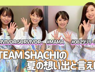 TEAM SHACHIに8月29日リリースの『SURVIVOR SURVIVOR/MAMA」についてインタビュー!